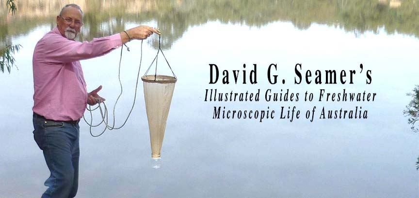David Seamer Illustrated Guides